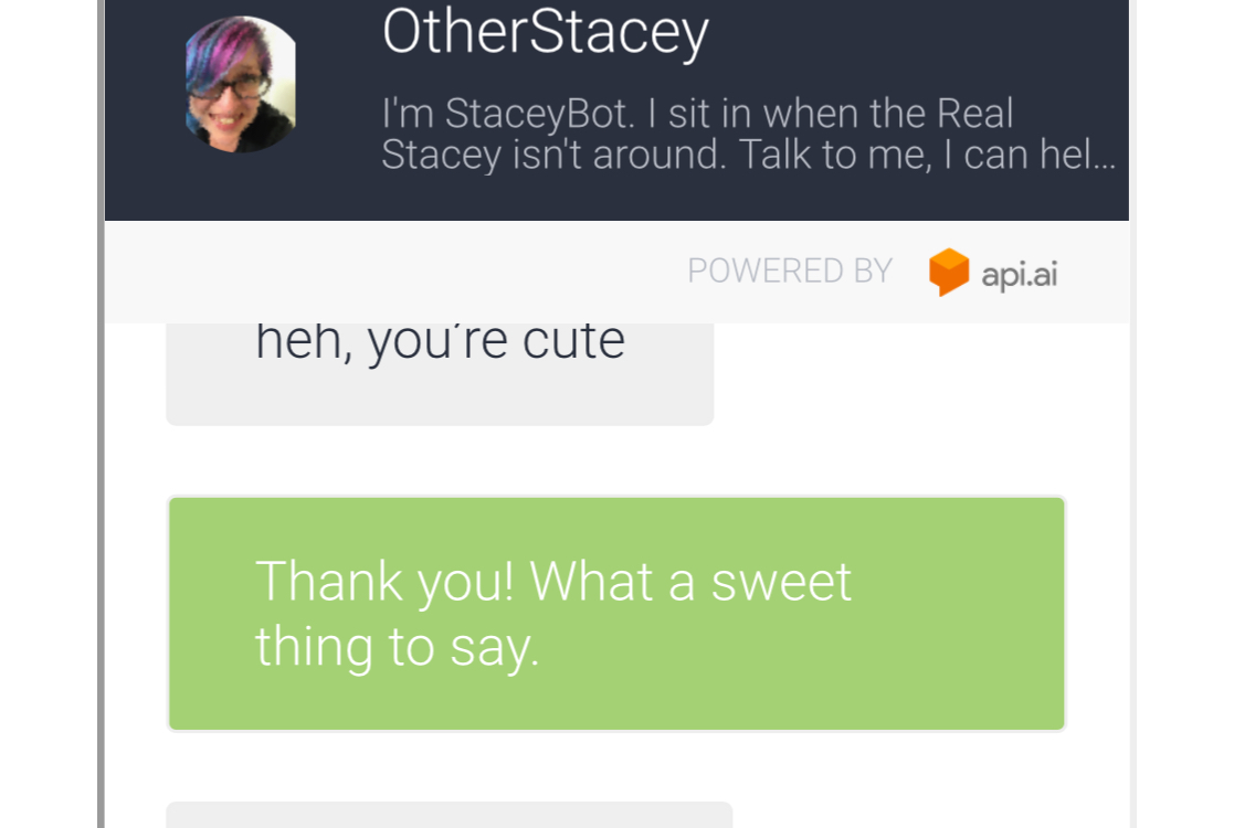 Screenshot of chat with  StaceyBot , my MeBot
