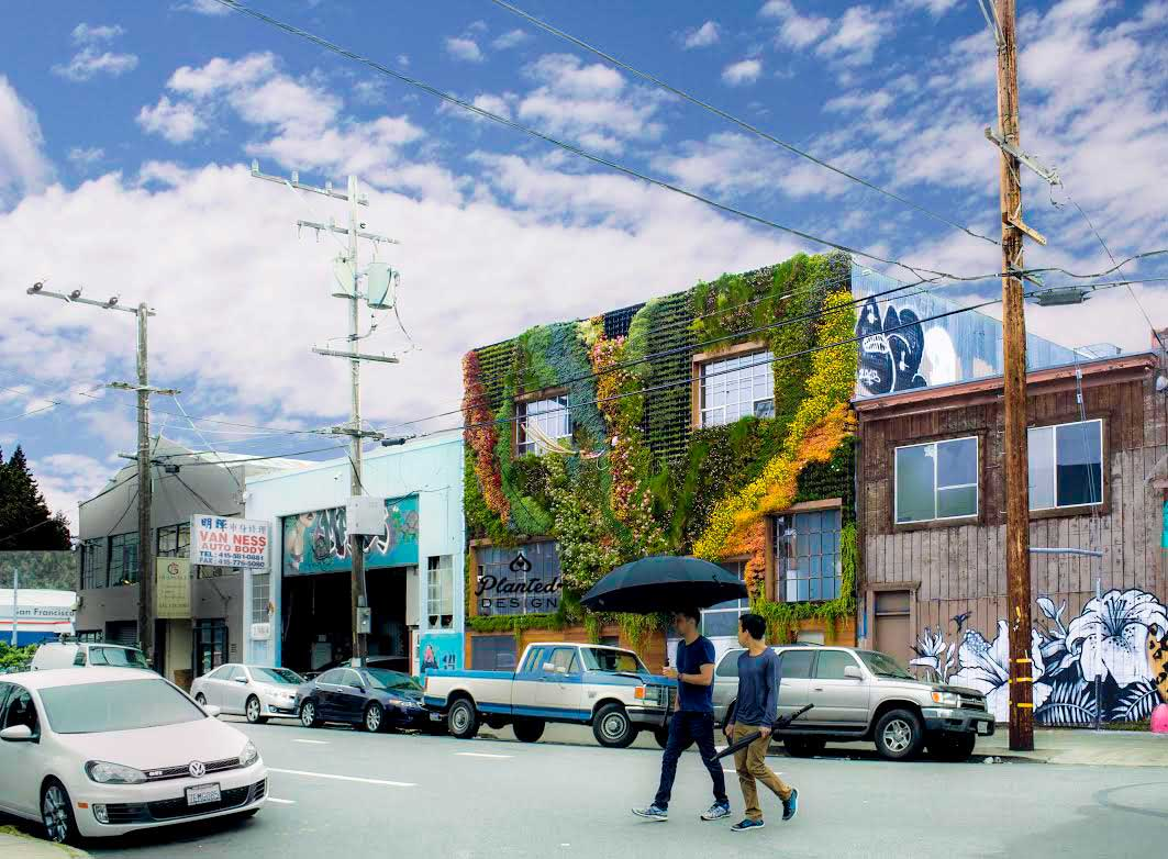 Planted-Design-Be-Safe-House-Living-Wall-Mission-District-SF.jpg