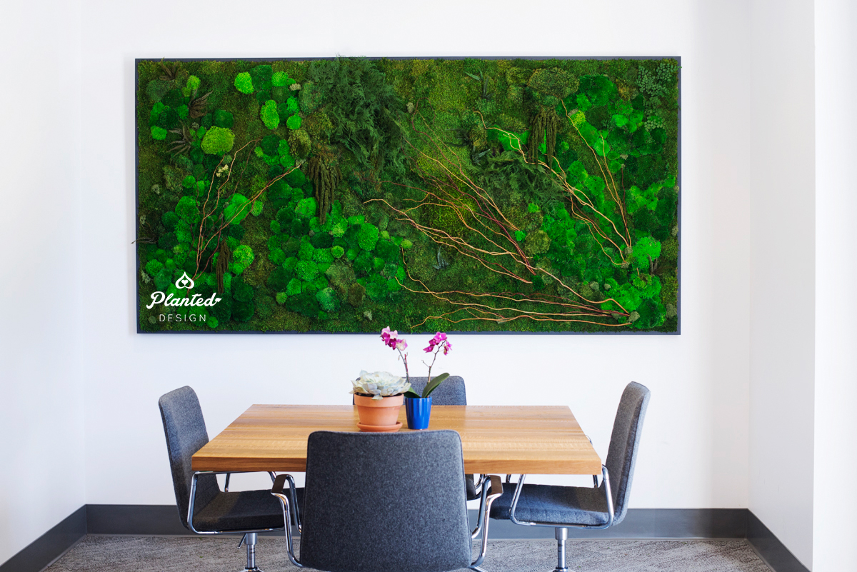 Inside Source Moss Living Wall Planted Design
