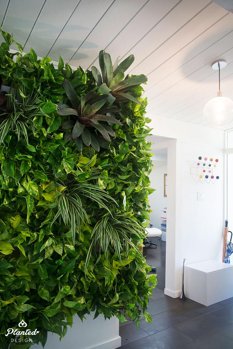 PlantedDesign-LivingWall-SF-ChrisMisner8.jpg