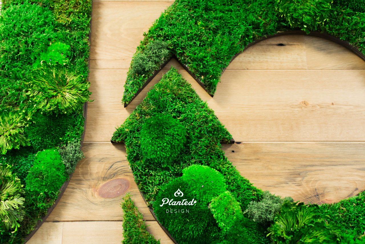 PlantedDesign-Moss-Wall-SF-CircleUp-1.jpg