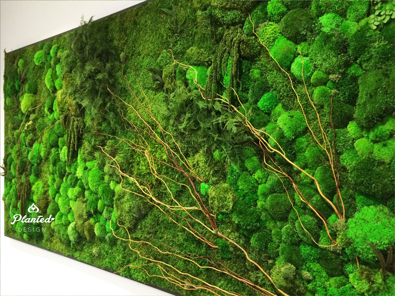 PlantedDesign-Moss-Wall-SF-InsideSource-11.jpg