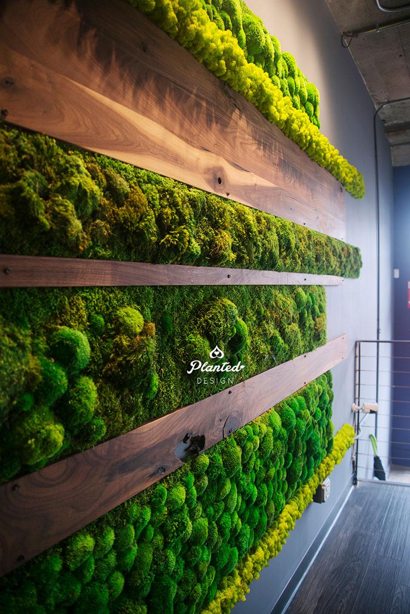PlantedDesign-Moss-Wall-SF-IronSource-12.jpg