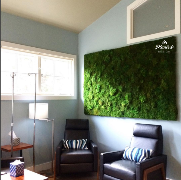 PlantedDesign-Moss-Wall-SF-MarinNaturalMedicineClinic1.jpg
