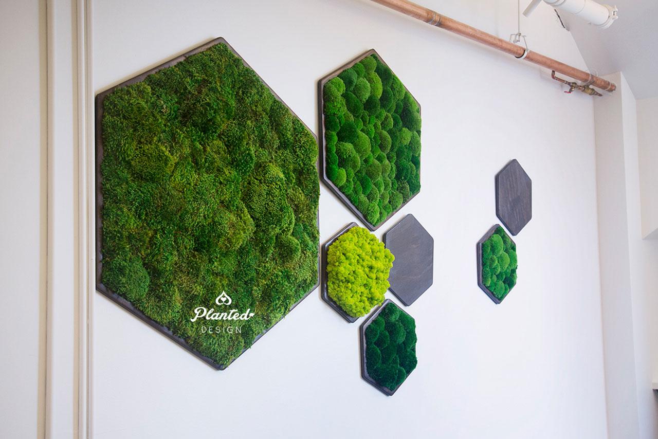 PlantedDesign-MossWall-SF-NRDC6.jpg
