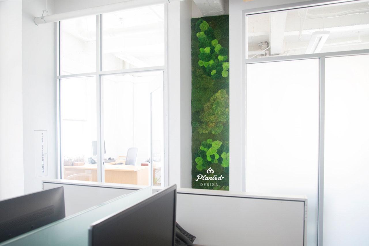 PlantedDesign-MossWall-SF-NRDC15.jpg