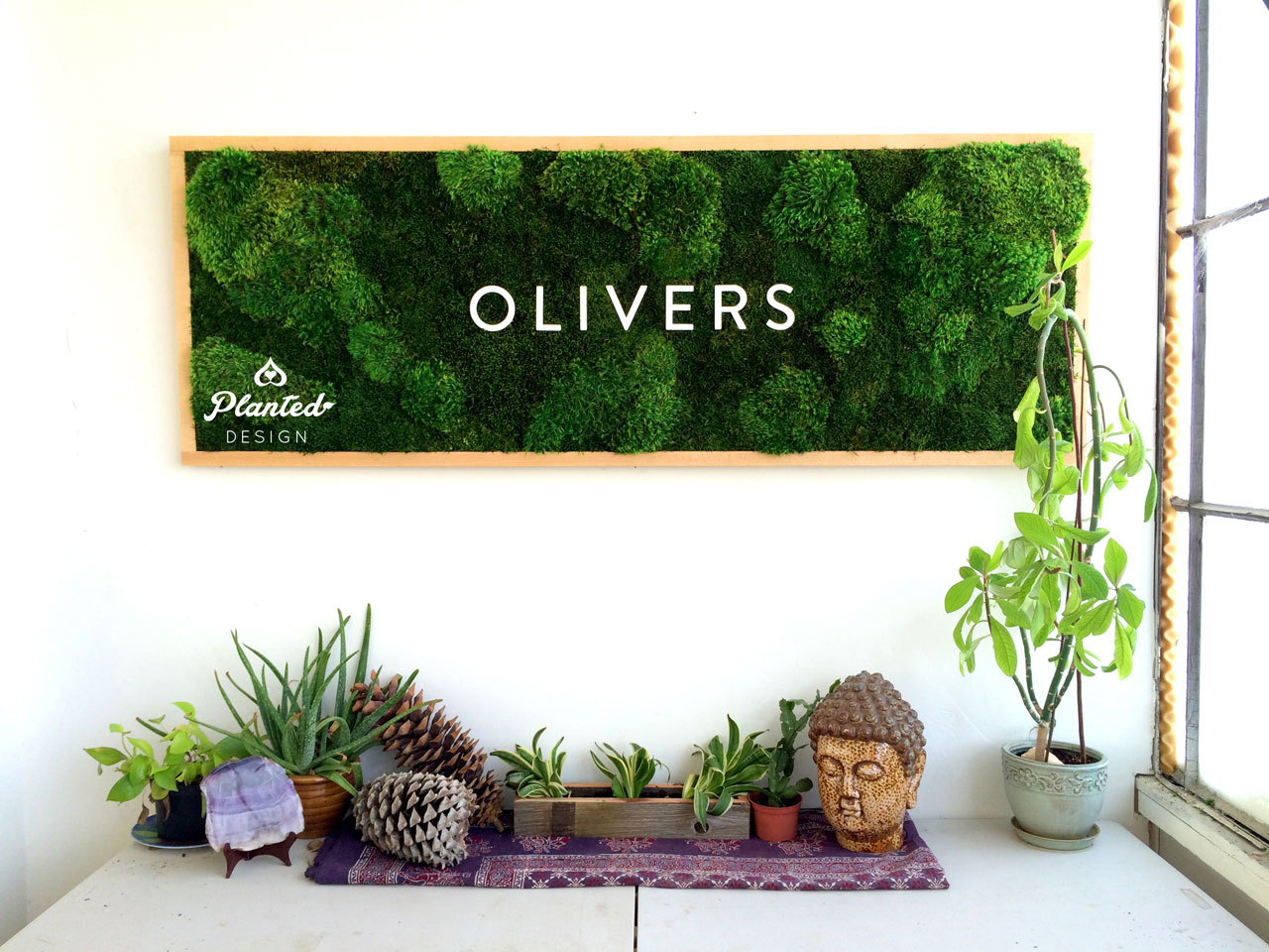 PlantedDesign-Moss-Wall-SF-Olivers-2.jpg