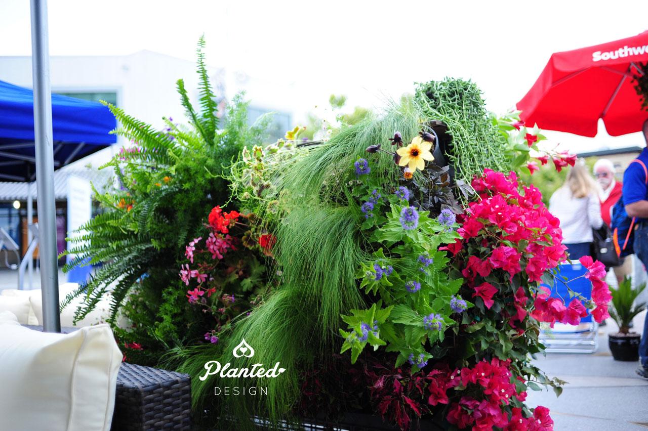 PlantedDesign-RentalLivingWall-SF-LivingSouthwest12.jpg
