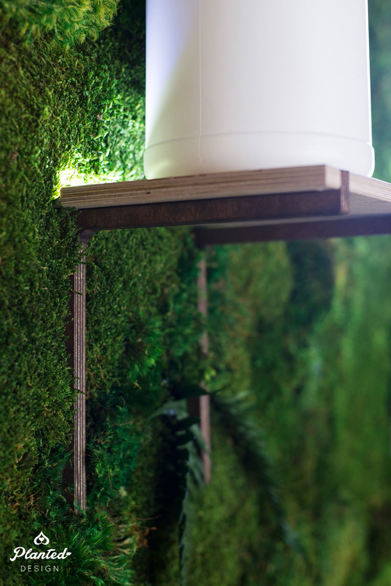 PlantedDesign-Moss-Wall-SF-TappinRoots2.jpg