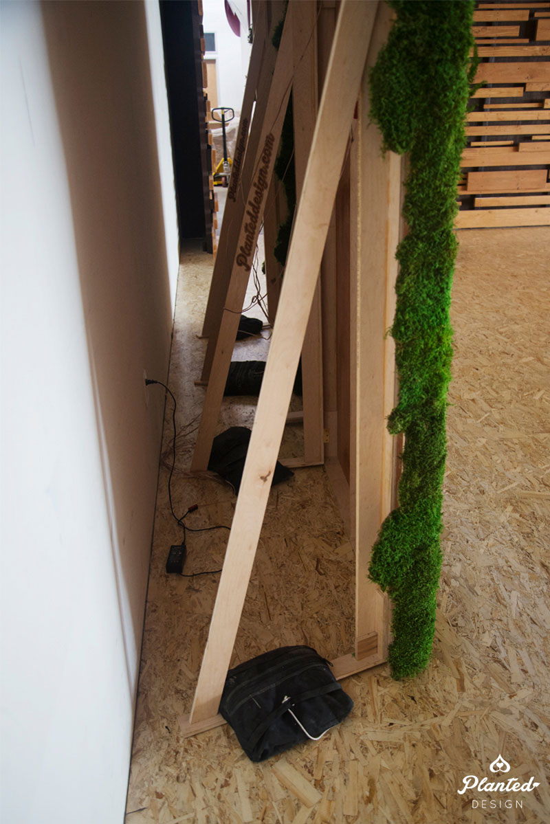 PlantedDesign-Moss-Wall-SF-TappinRoots6.jpg