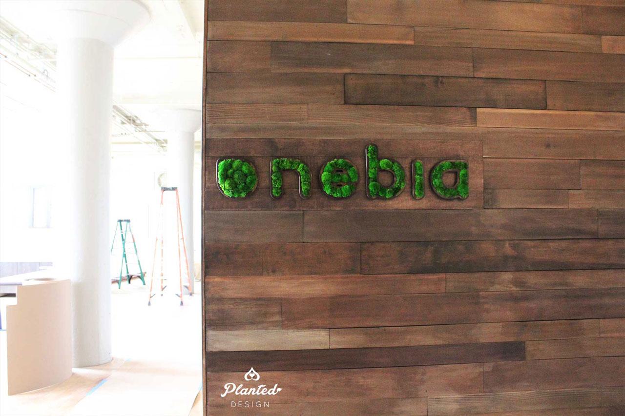 Nebia  - Moss Wall