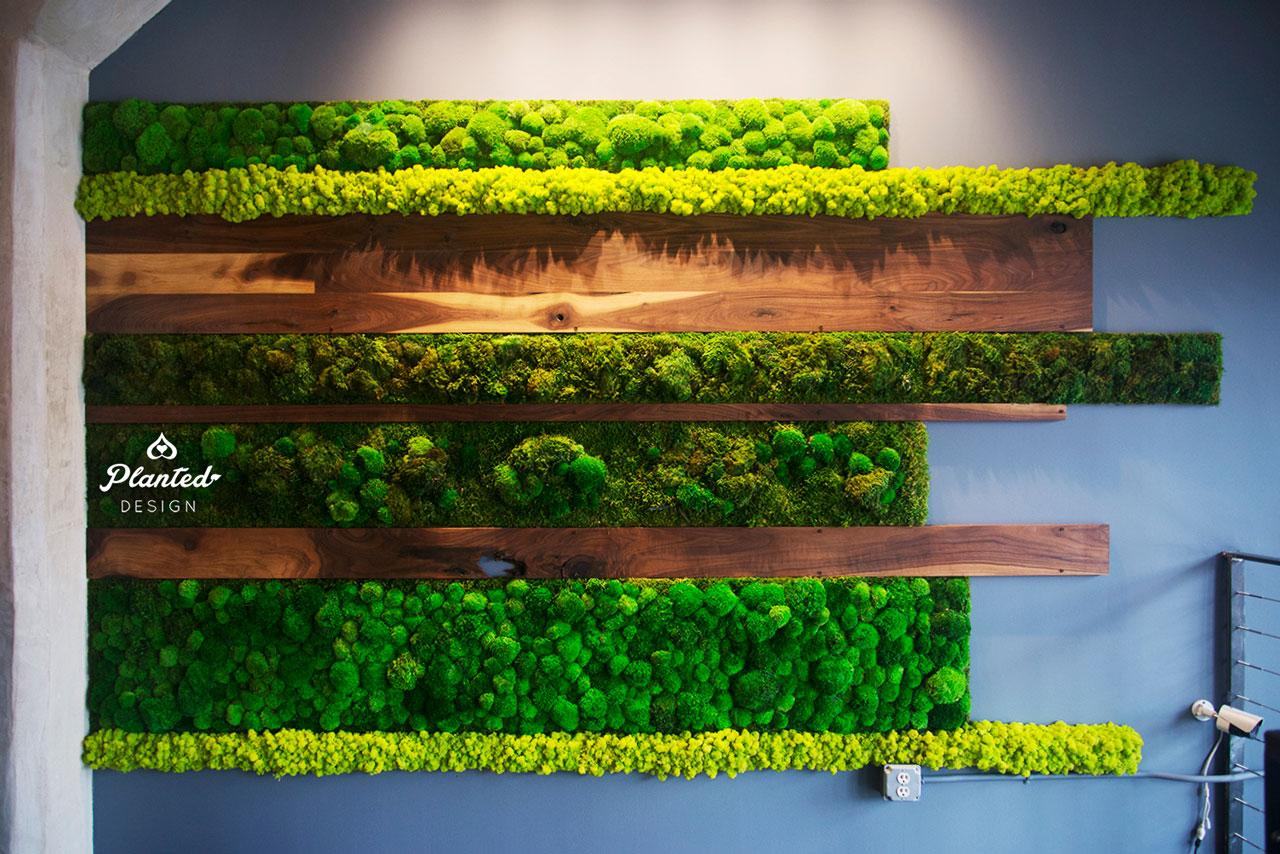 Iron Source  - Moss Wall