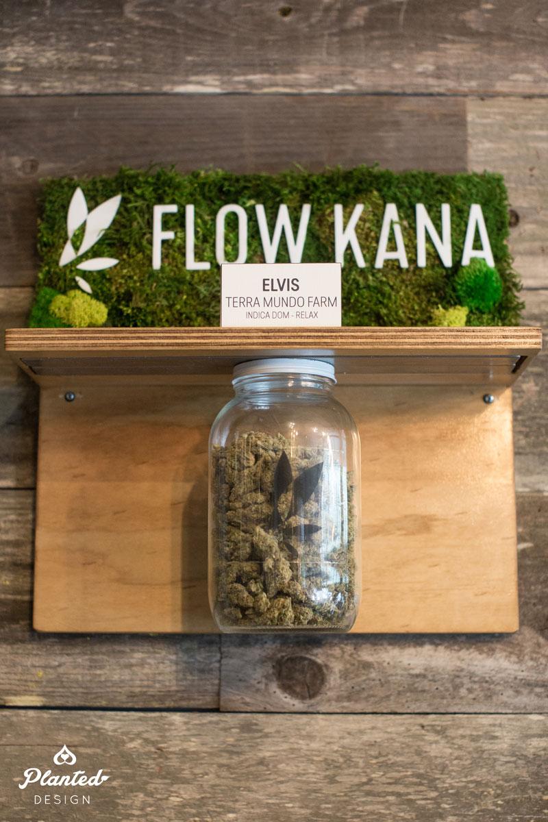 Flow Kana  - Moss Wall