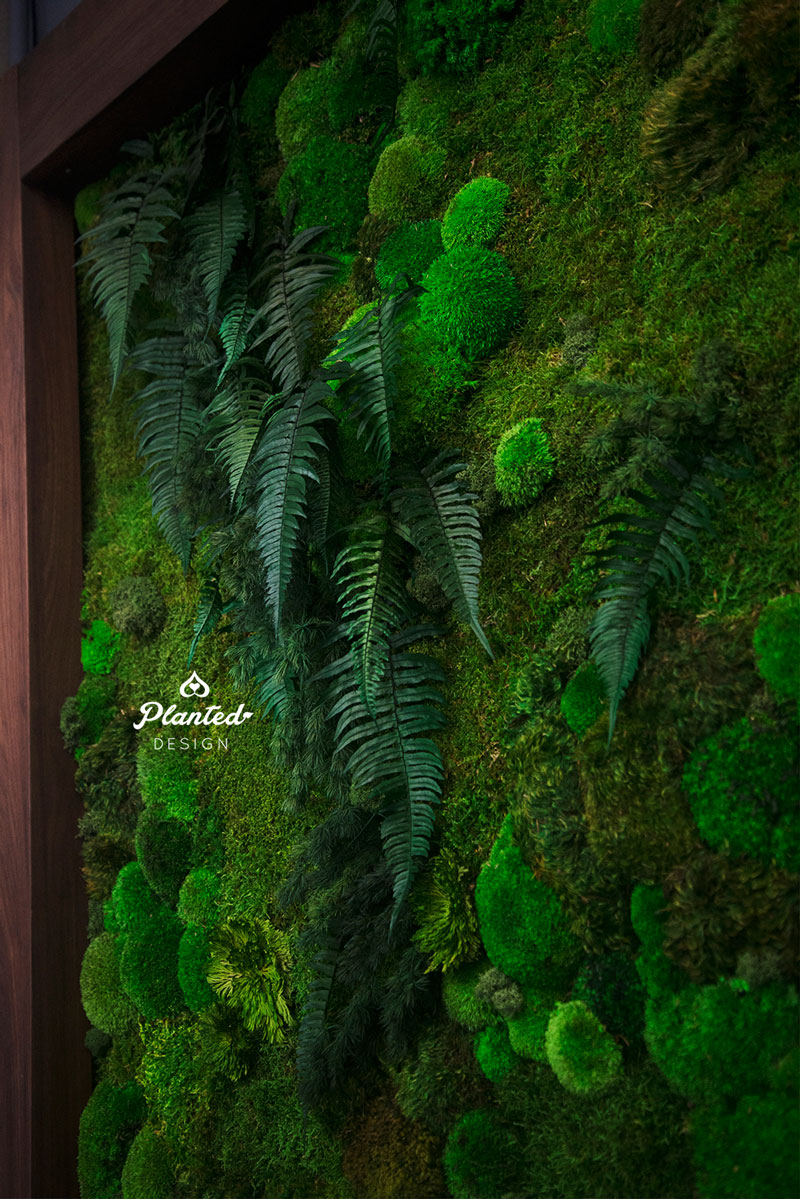 PlantedDesign-Living-Wall-SF-IronSource-7.jpg