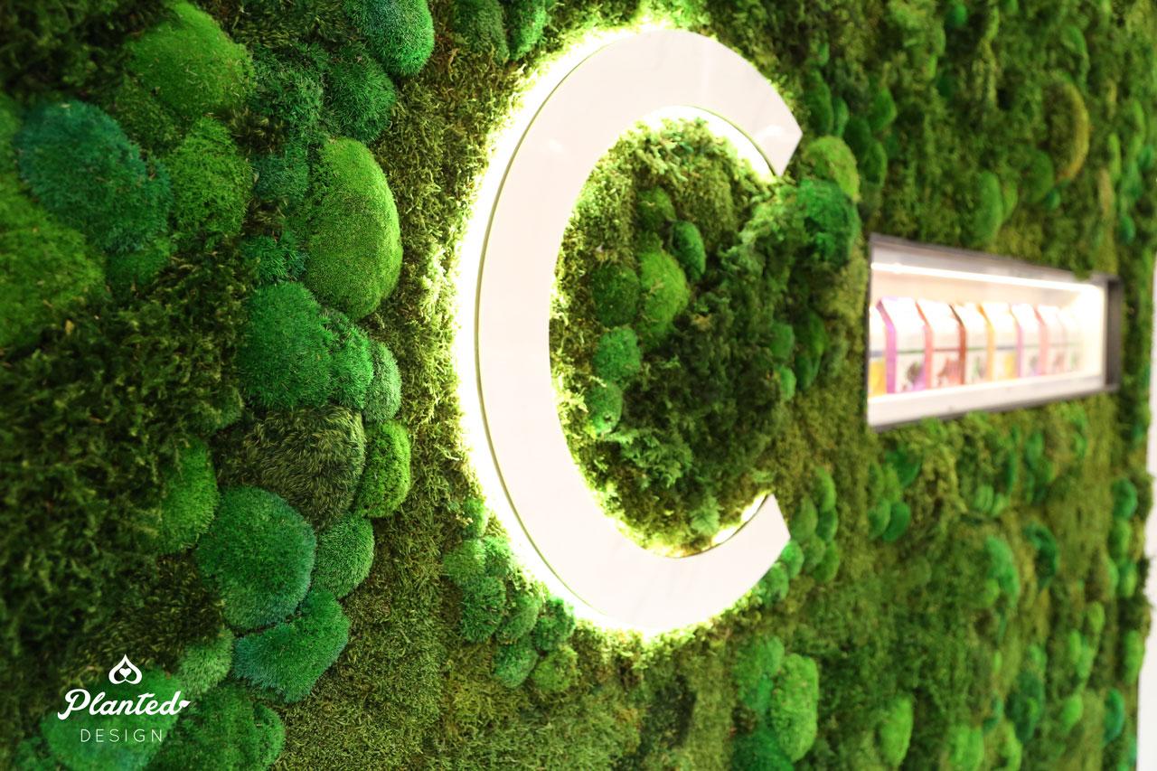 PlantedDesignNeoCellMossWallsNaturalProductsExpo68Website.jpg