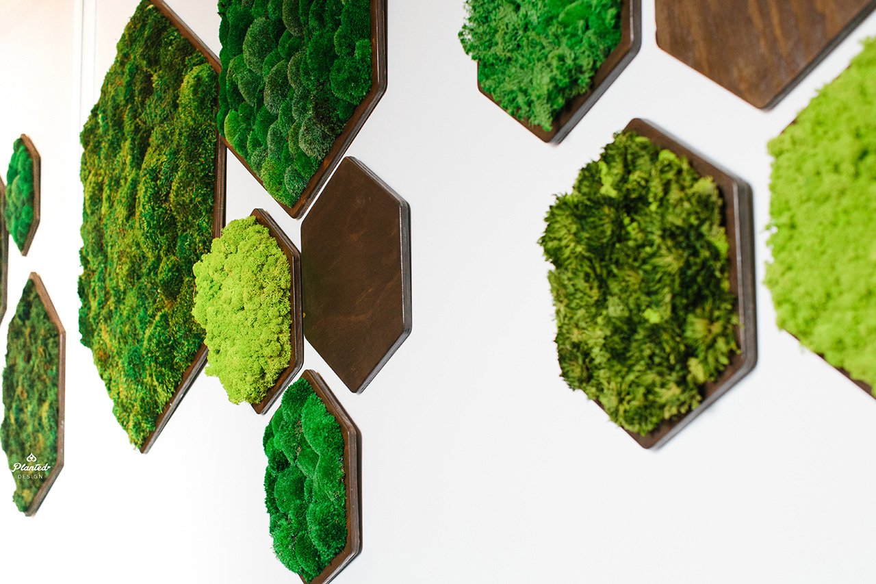 Planted Design Custom Living Preserved Moss Wall Columns Corner NRDC Offices San Francisco Maintenance Free LogoWEB_9.jpg