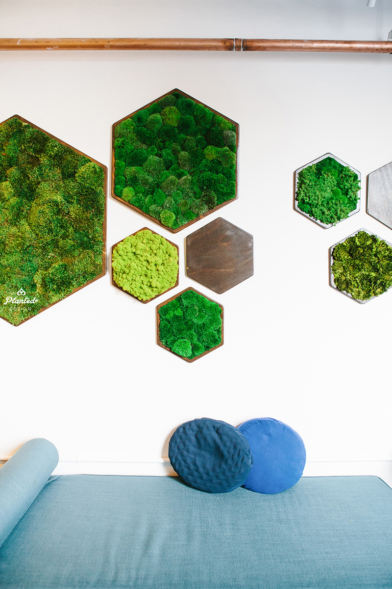 Planted Design Custom Living Preserved Moss Wall Columns Corner NRDC Offices San Francisco Maintenance Free LogoWEB_13.jpg