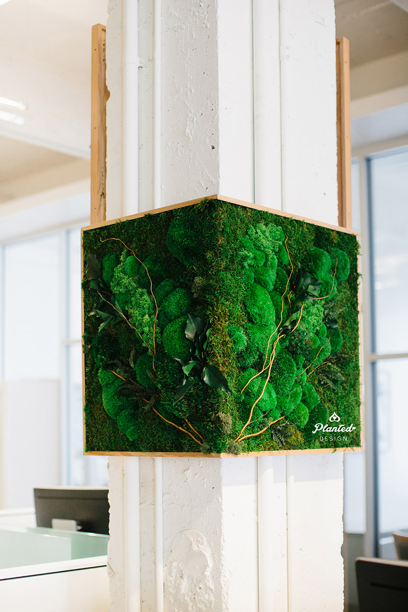 Planted-Design-Custom-Living-Preserved-Moss-Wall-Columns-Corner-NRDC-Offices-San-Francisco-Maintenance-Free-LogoWEB_2.jpg
