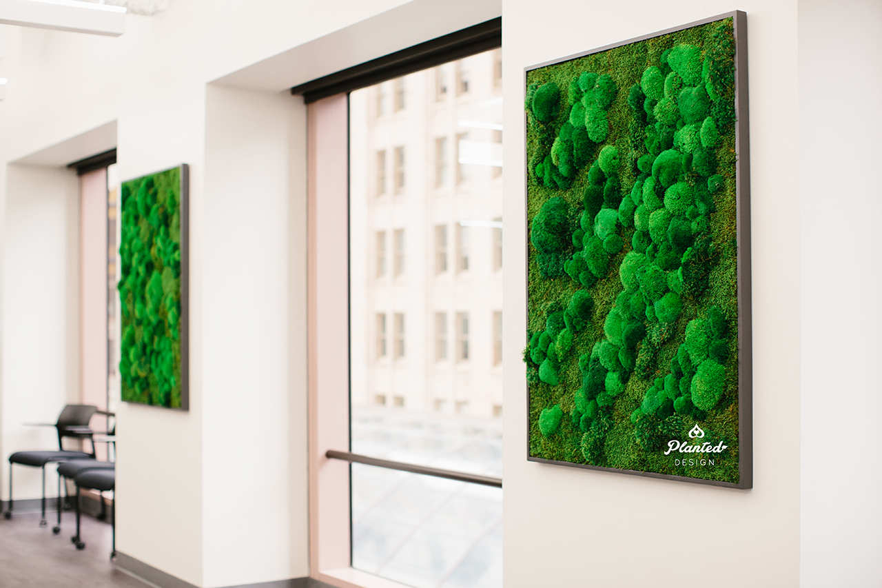 Open Table  - Moss Wall