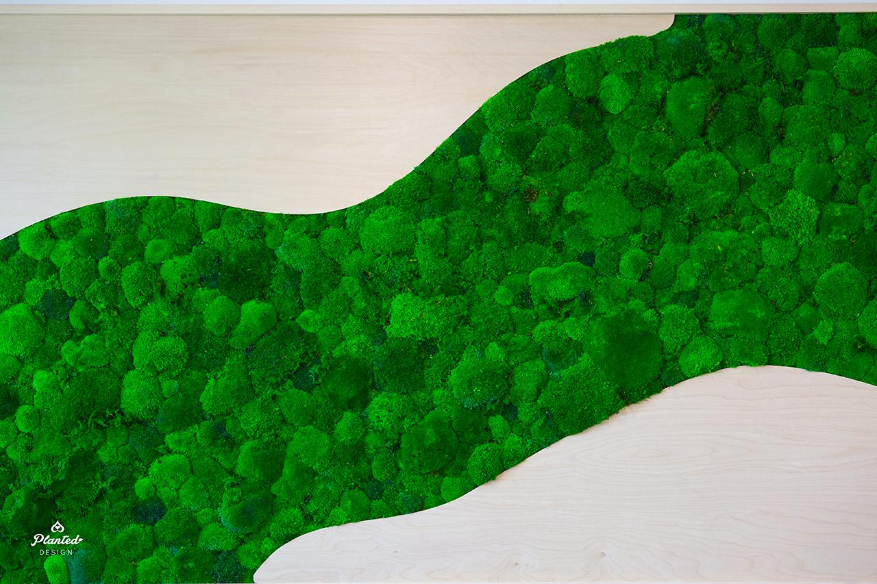 PlantedDesignUP2398PreservedMossWallWaveWoodFrameLogo-7.jpg