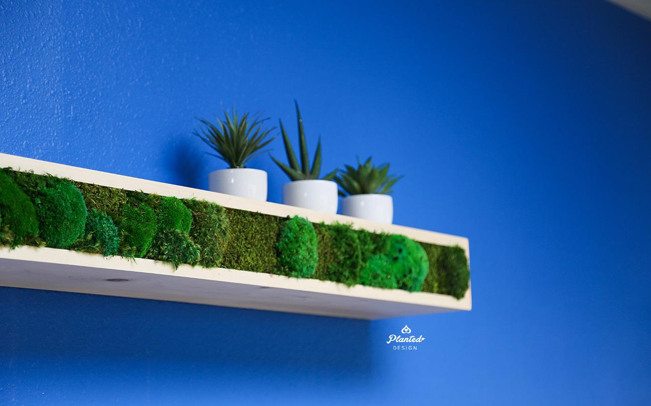 Fyuse  - Moss Wall