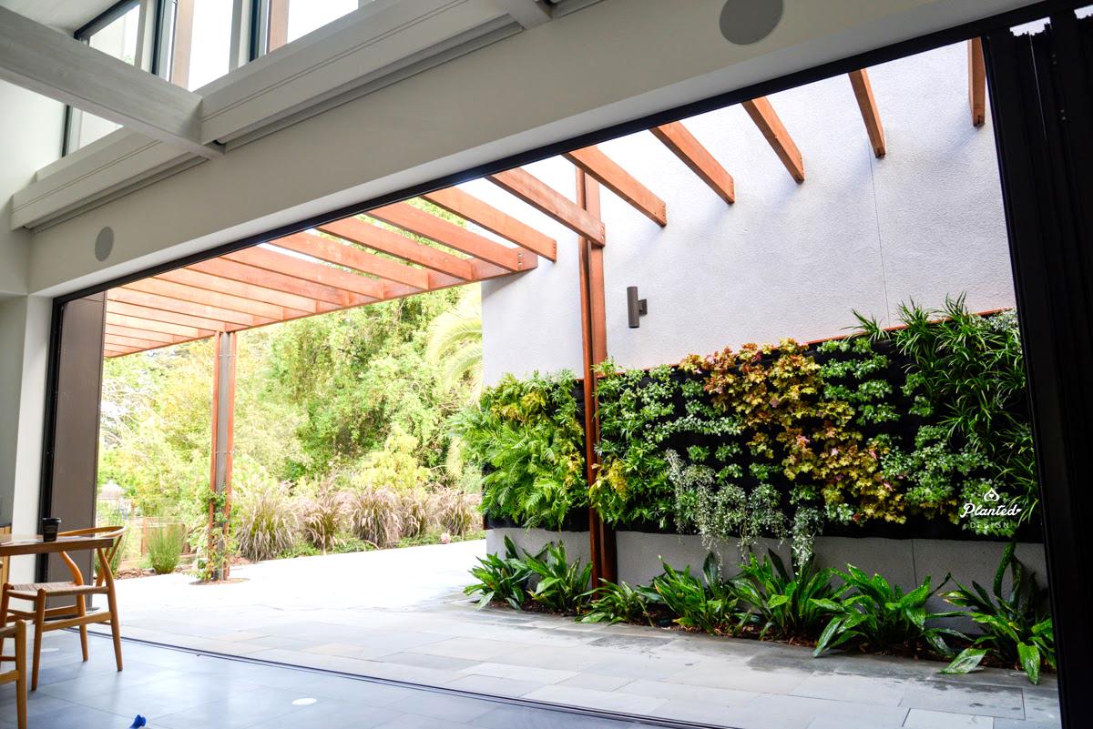 Florafelt Vertical Garden Installation by Planted Design Website 7.jpg