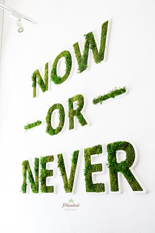 PlantedDesignNowOrNeverLogoPilatesNowCustomMossOakland4.jpg