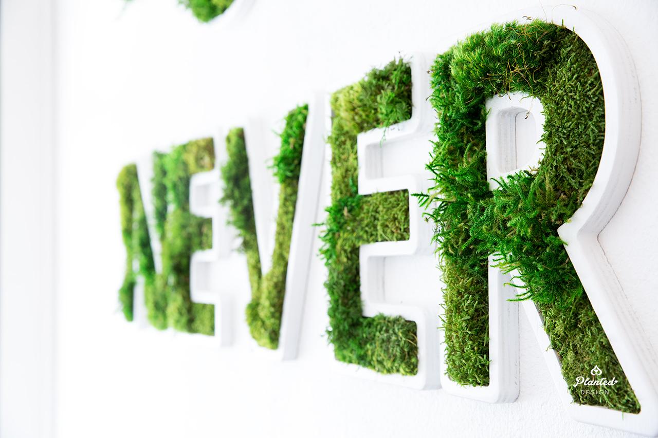 PlantedDesignNowOrNeverLogoPilatesNowCustomMossOakland5.jpg