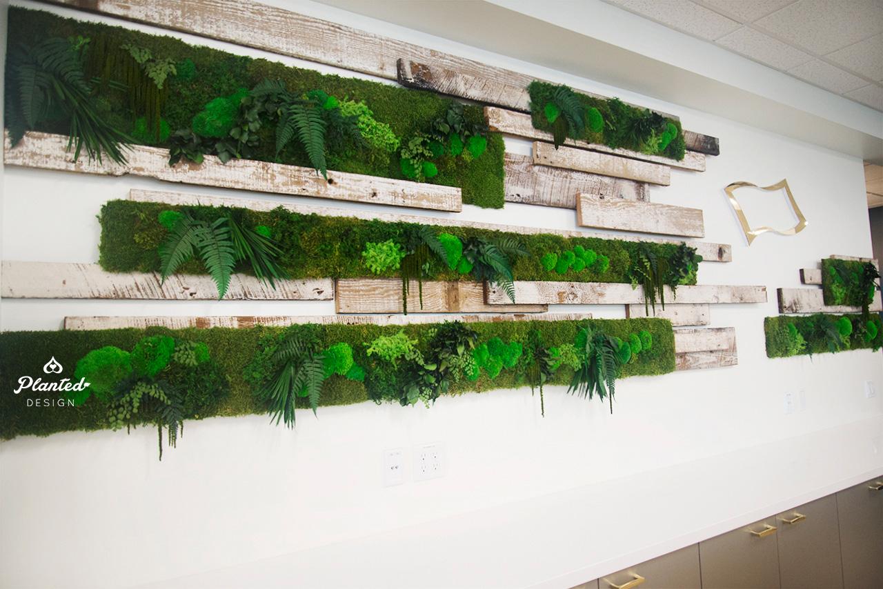 Neodyne  - Moss Wall