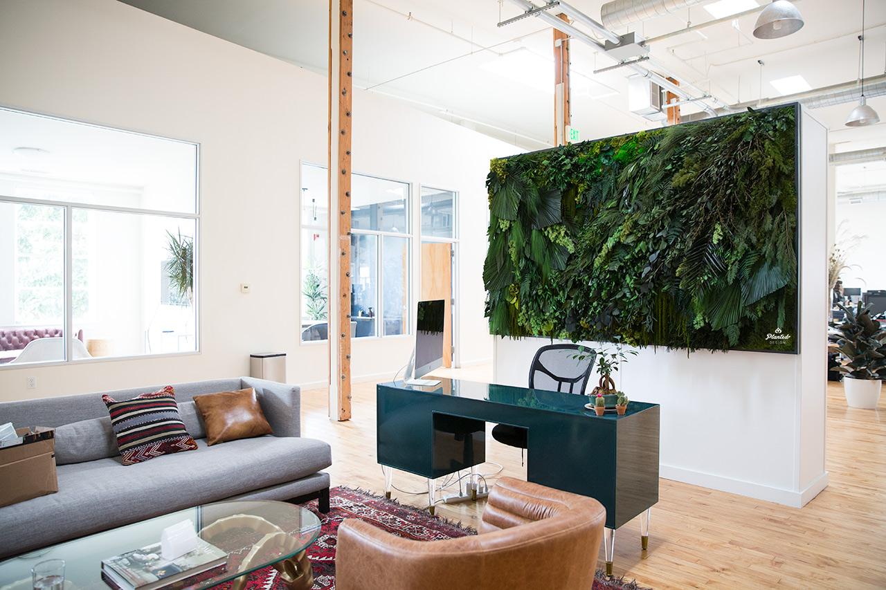 Sonder  - Living Wall