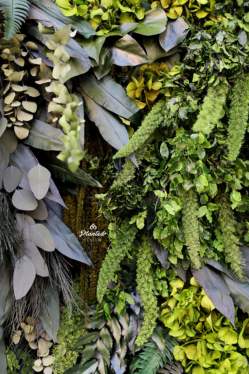 PlantedDesignSeventhGenerationMossWallRental08website.jpg