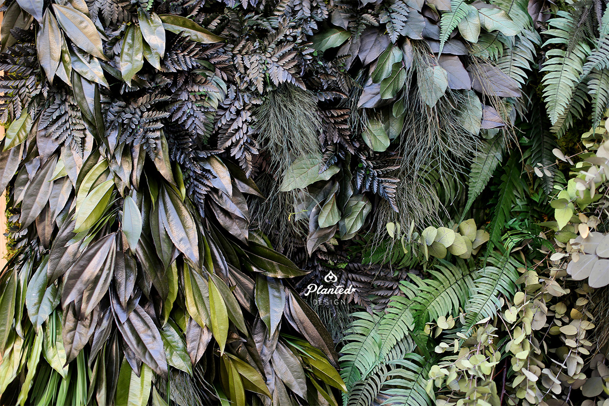 PlantedDesignSeventhGenerationMossWall07website.jpg