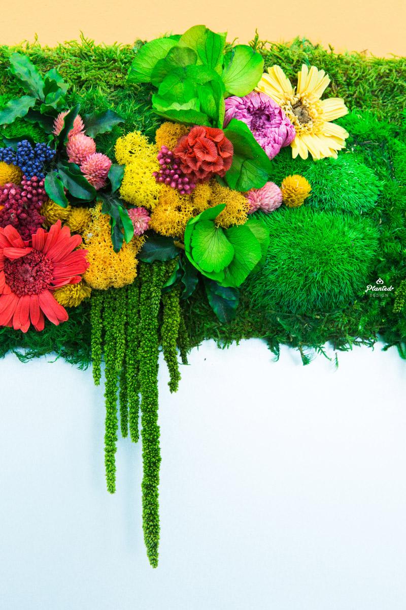 PlantedDesignMossPlantLivingWallsWithFlowersStripesAndLogos24-7_0439.jpg