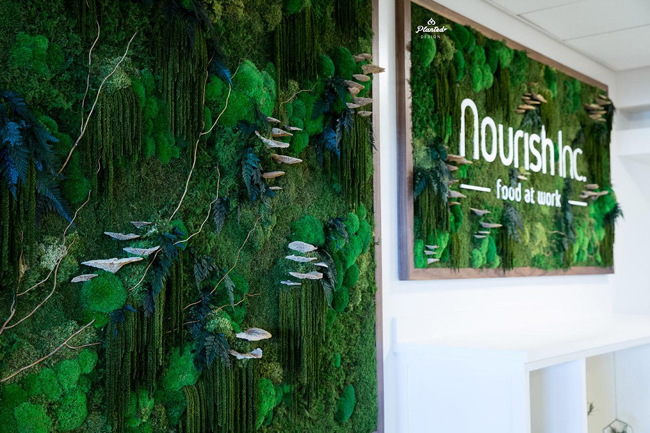 Nourish  - Moss Wall