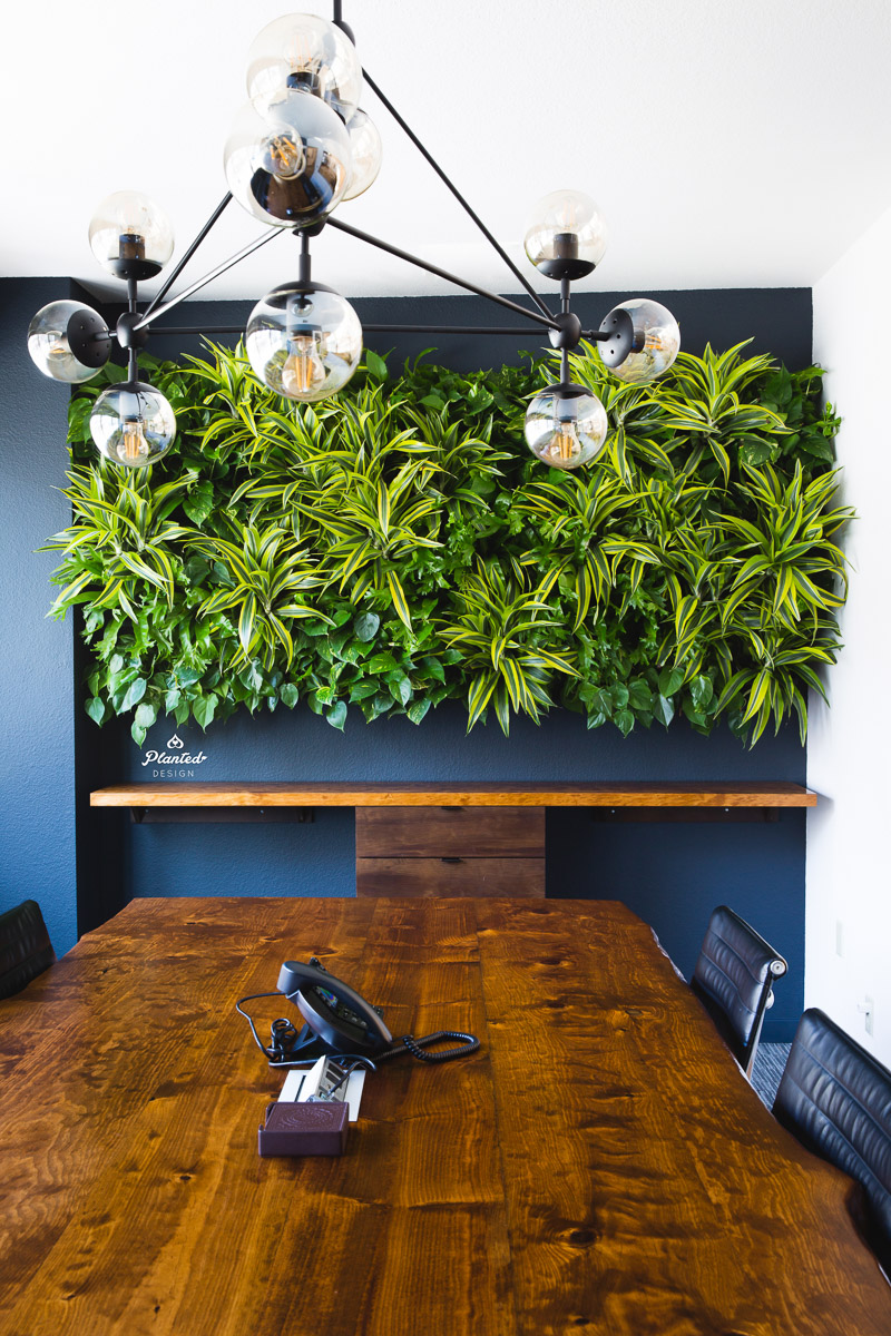 PlantedDesignLivingWallKirschenbaumLawCorporationOakland_2386.jpg