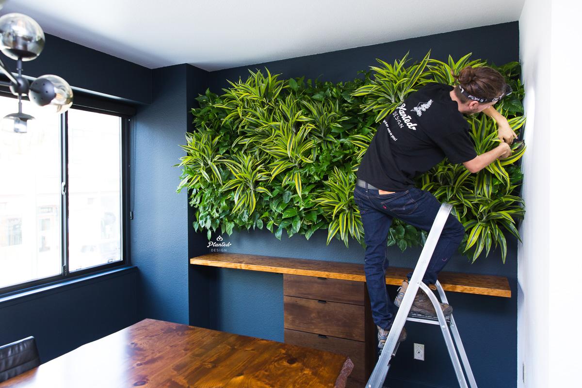 PlantedDesignLivingWallKirschenbaumLawCorporationOakland_1003.jpg