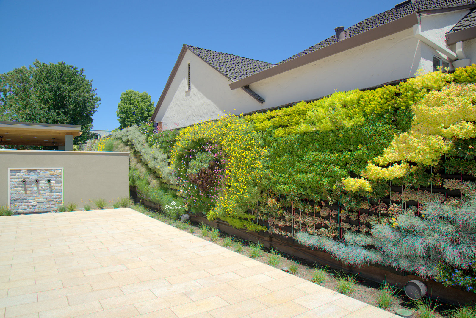Planted-Design-Living-Wall-Pleasanton-California-24-_CJB4419.jpg
