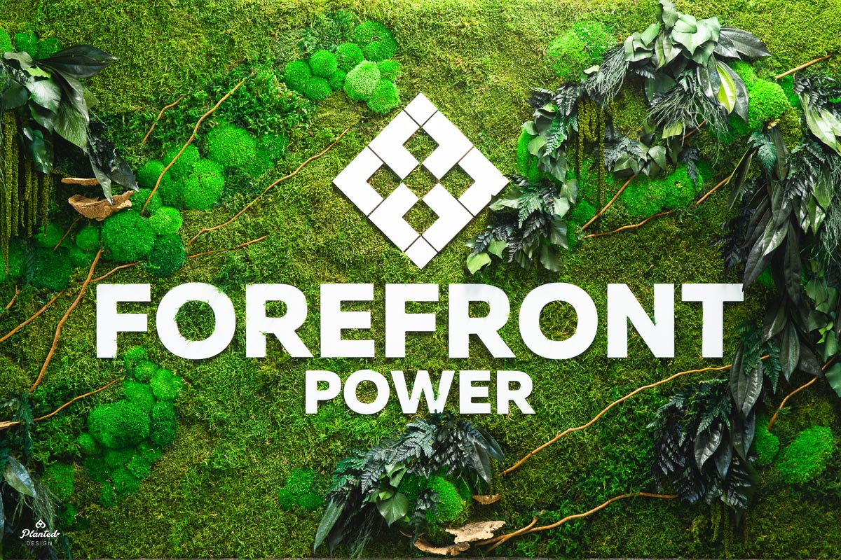 PlantedDesign_FreestandingPartition_MossWall_ForeFrontPower_SanFrancisco_ReceptionDesk_Branches_Mushrooms_Amaranth_Ferns_3564.jpg