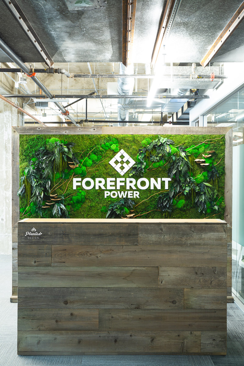PlantedDesign_FreestandingPartition_MossWall_ForeFrontPower_SanFrancisco_ReceptionDesk_Branches_Mushrooms_Amaranth_Ferns_3561.jpg