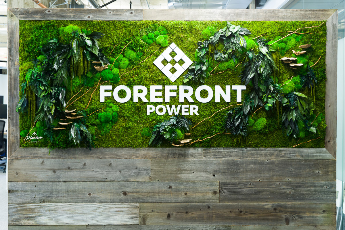 PlantedDesign_FreestandingPartition_MossWall_ForeFrontPower_SanFrancisco_ReceptionDesk_Branches_Mushrooms_Amaranth_Ferns_3546.jpg