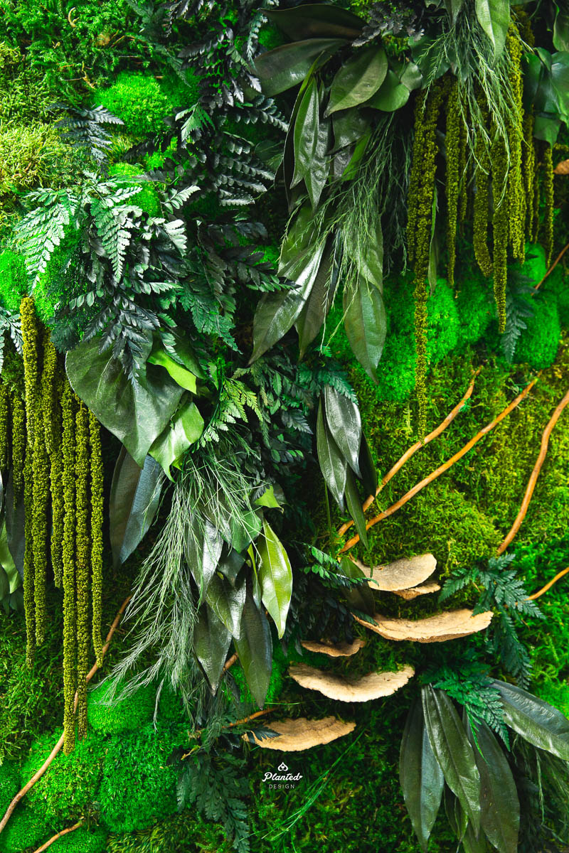 PlantedDesign_FreestandingPartition_MossWall_ForeFrontPower_SanFrancisco_ReceptionDesk_Branches_Mushrooms_Amaranth_Ferns_3577.jpg