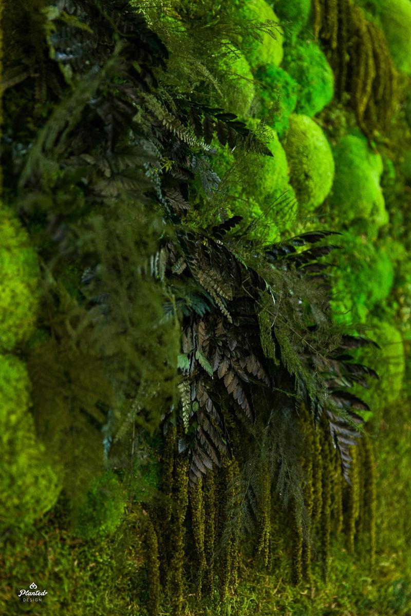 PlantedDesign_Moss_Frame_BetaBrand_Store_SanFrancisco_California_3829.jpg