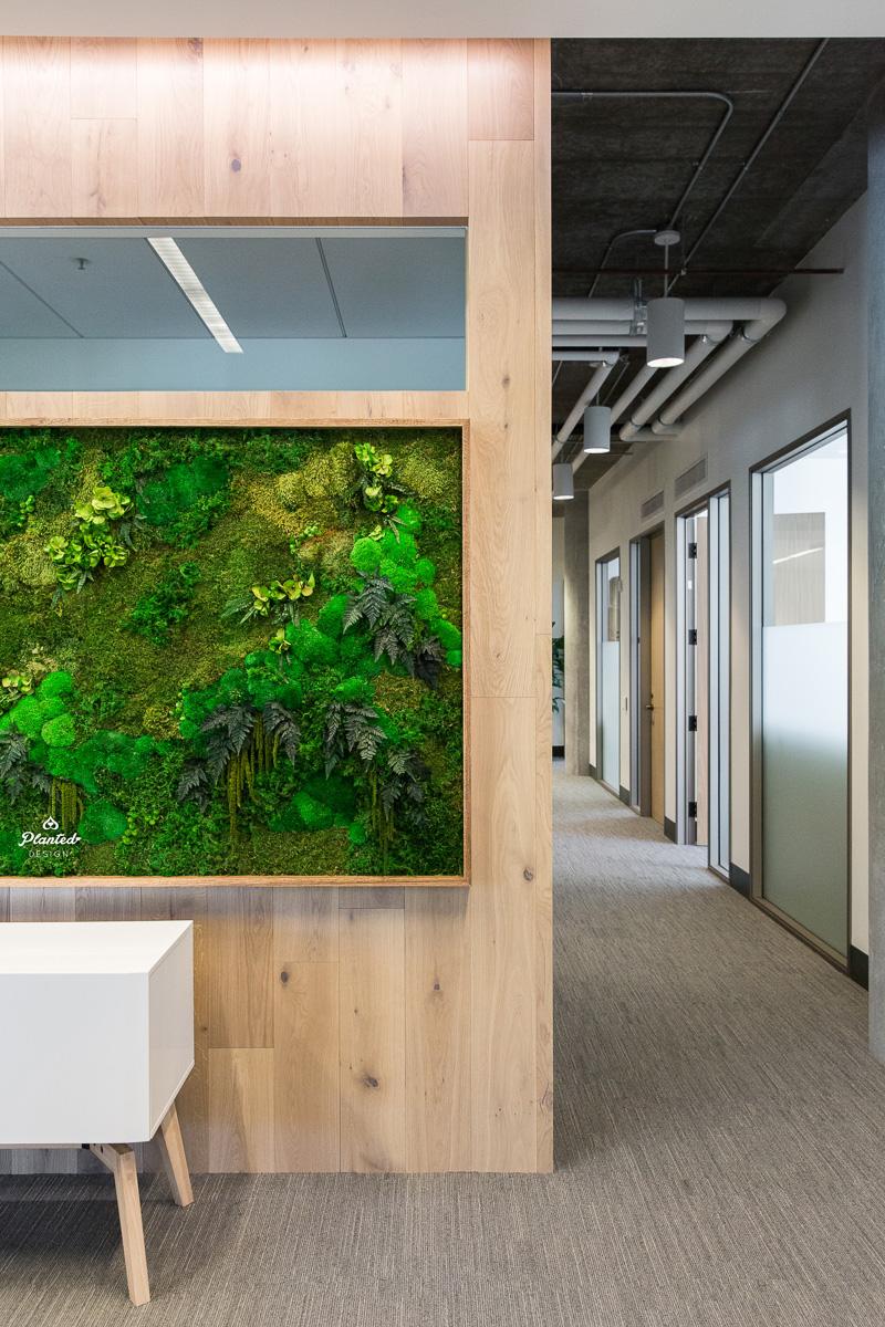 PlantedDesign_Moss_Frame_Ridge_Ventures_Reception_SanFrancisco_California_3956.jpg