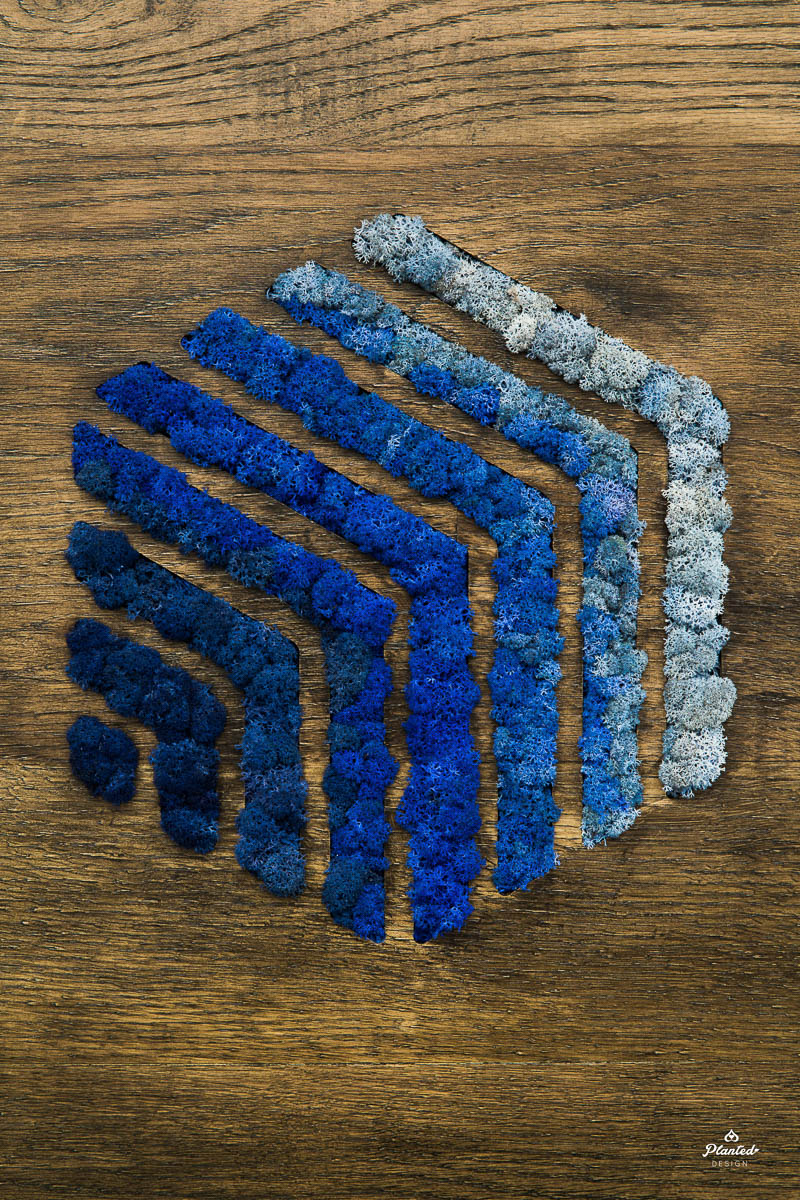 Moss Wall Logo Blue Planted Design
