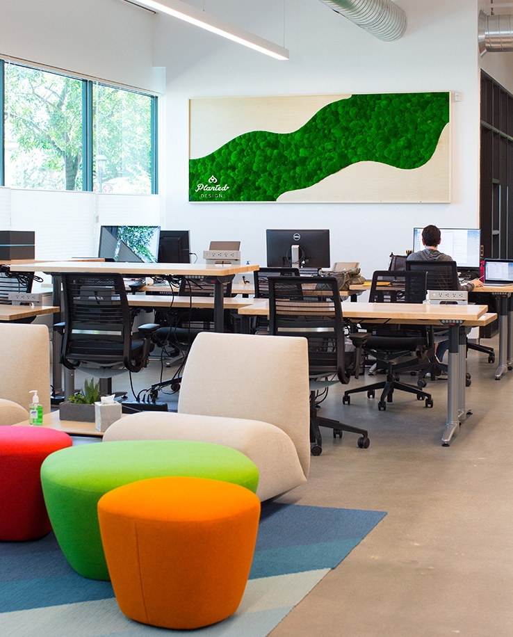 Adding green to your workspace is a boost for creativity and brain function!