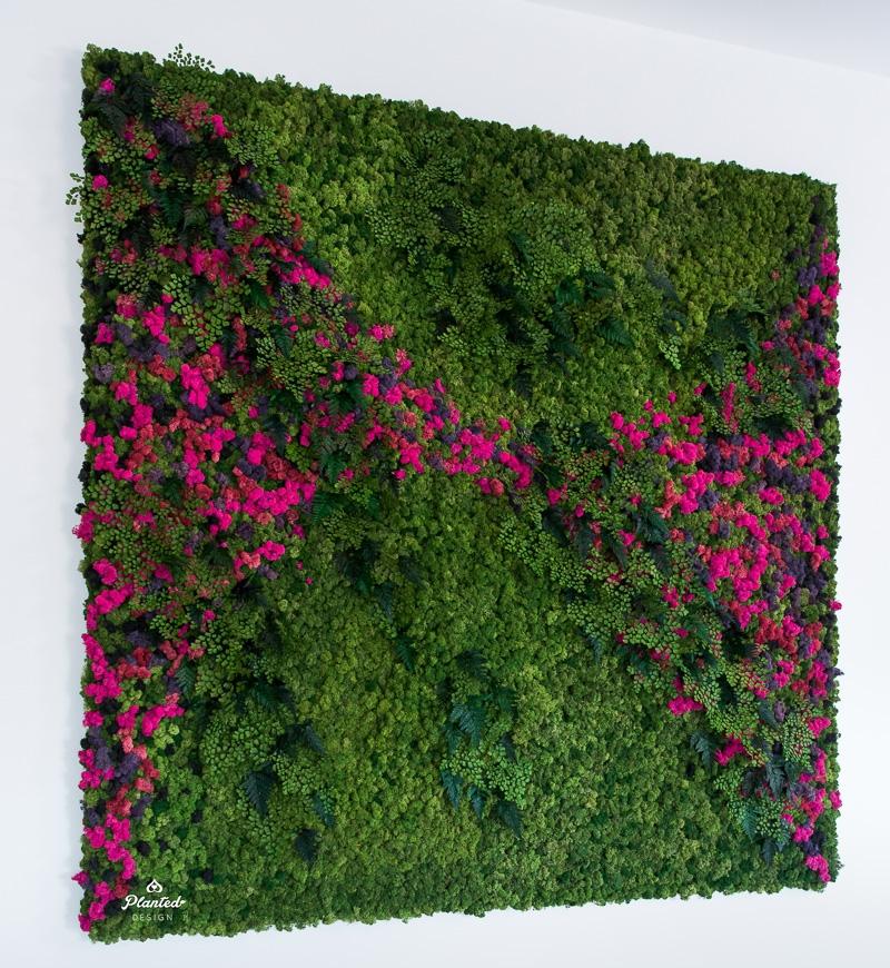 PlantedDesignBrotherVsBrotherHGTVMossPlantLivingWall_0956-2.jpg