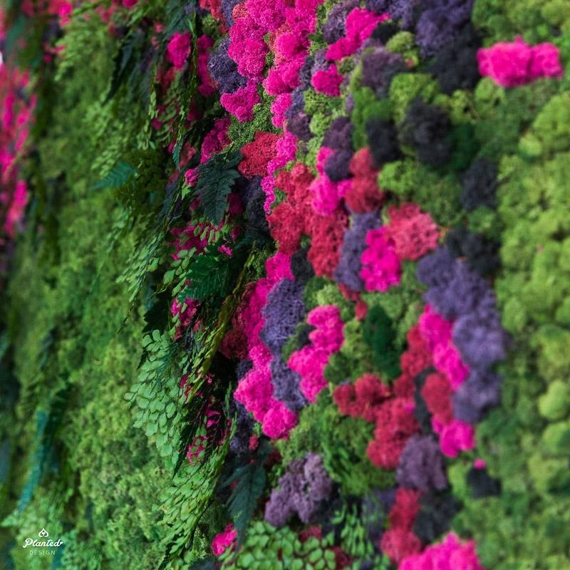 PlantedDesignBrotherVsBrotherHGTVMossPlantLivingWall_0966.jpg