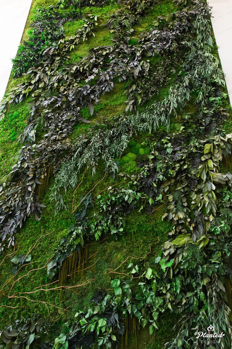 PlantedDesign_HotelTrio_MossWall_Healdsburg_California_5196.jpg