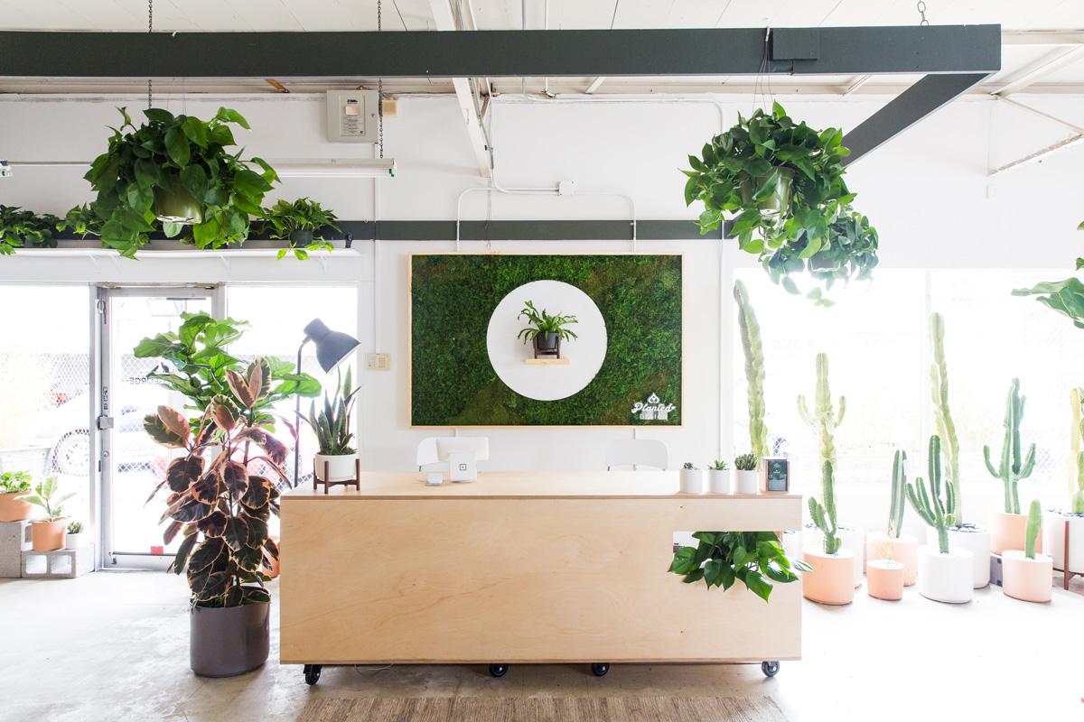 PlantedDesign_MossWall_LeonandGeorge_SanFrancisco_Showroom_Shelf_4947.jpg