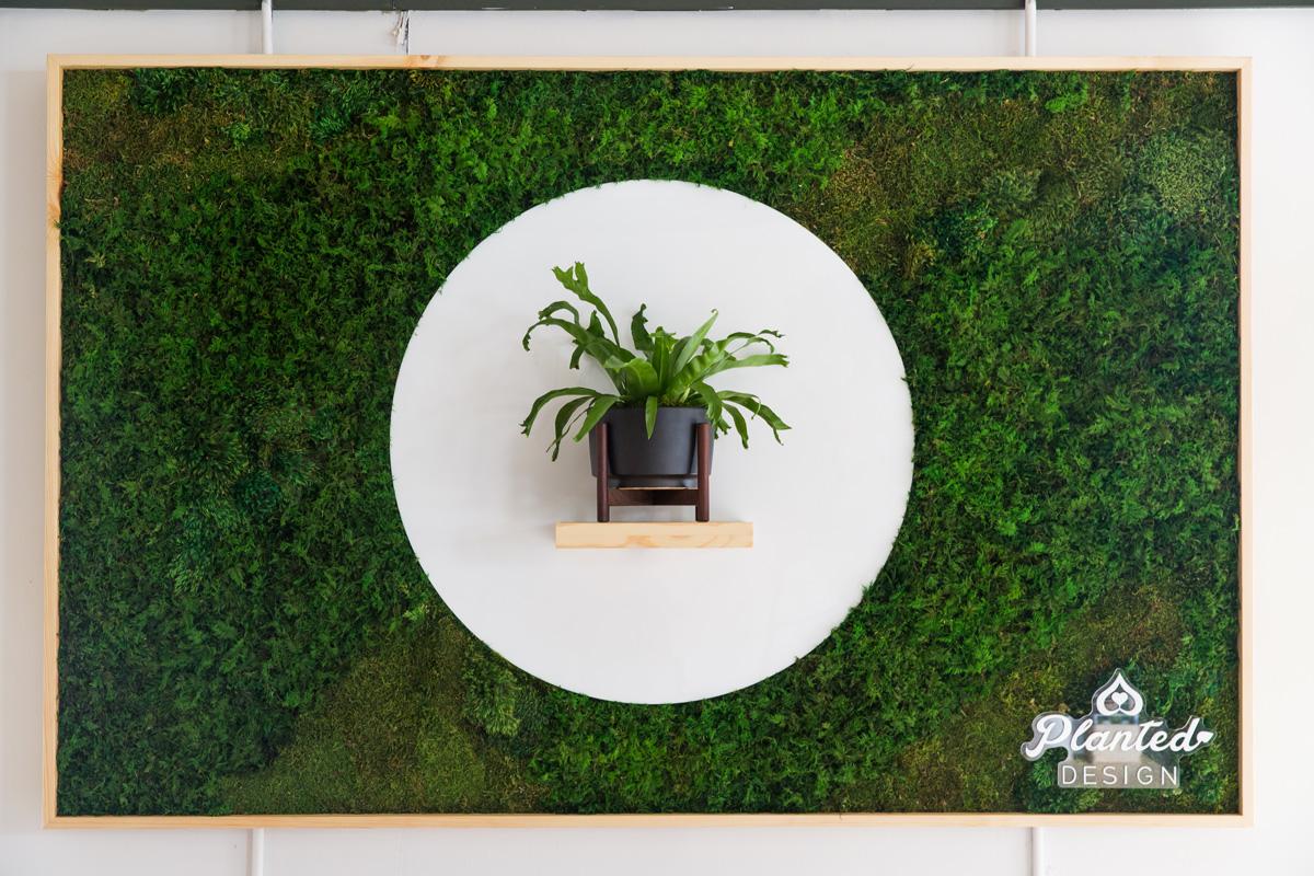 PlantedDesign_MossWall_LeonandGeorge_SanFrancisco_Showroom_Shelf_4951.jpg